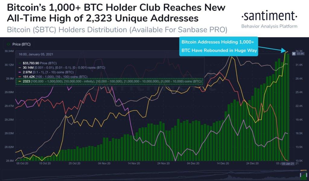 bitcoin balinalarinin sayisi artiyor 602119613d645