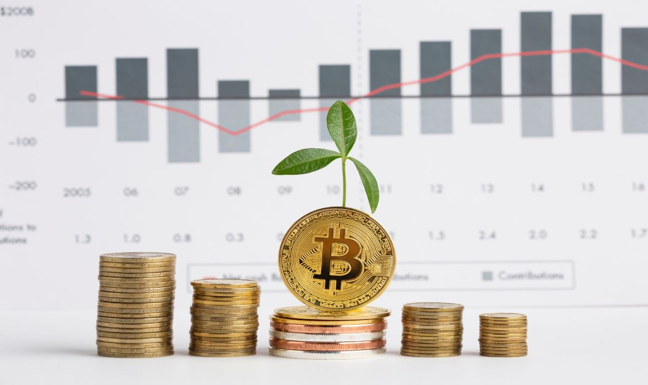 bitcoin cuzdanlarinin sayisi 223 milyona yukseldi 602116eba5361