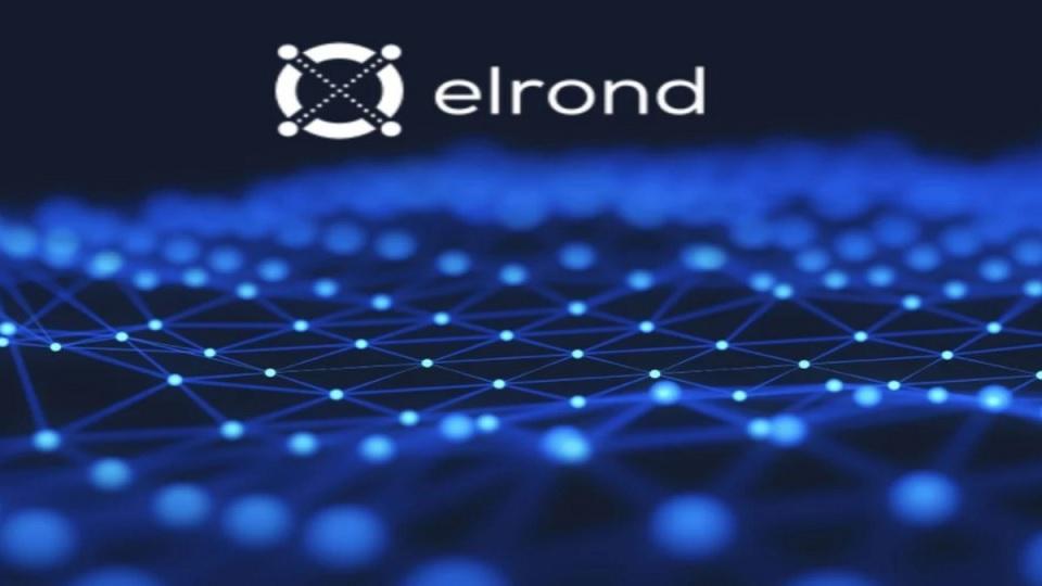 elrond egld samsung blockchain cuzdanda saklanabilir 60212f07ab6aa