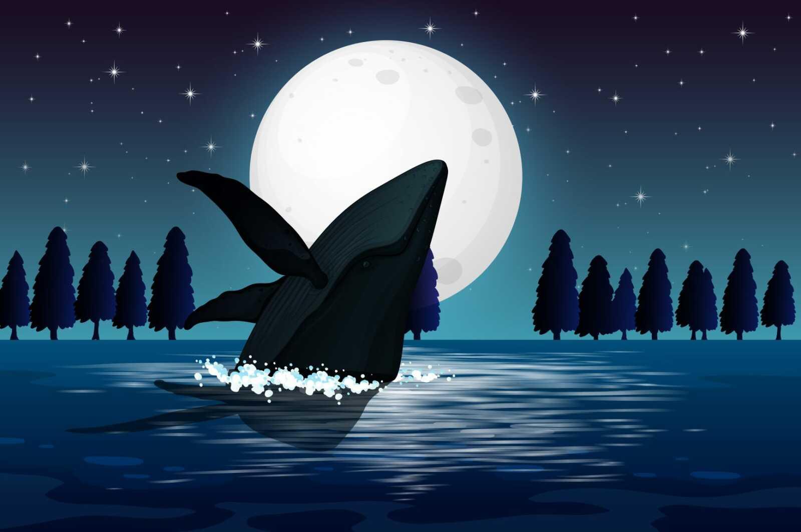 kripto balina tek harekette 615 milyon dolar harekete gecirdi 602117f8dab8e