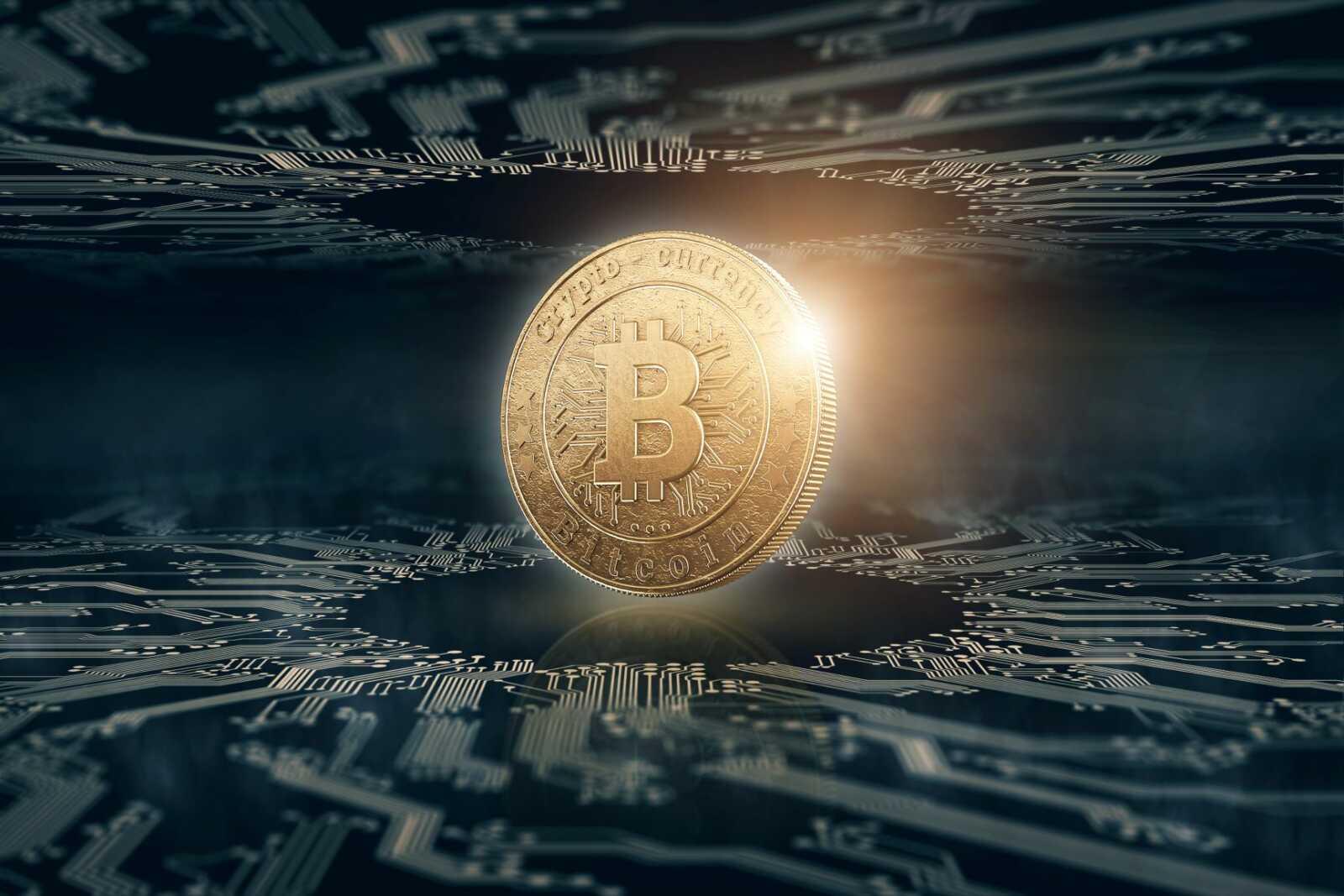 pantera capital bitcoin agustos 2021e kadar 115 000 dolara yukselecek 6021187b50d73
