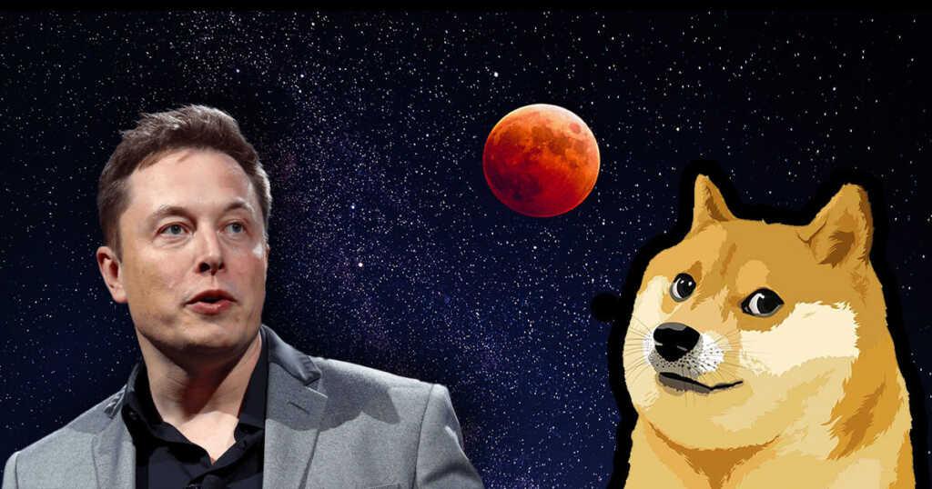 Dogecoin Elon Musk'ın Tweetinden Sonra Yüzde 13 Yükseldi