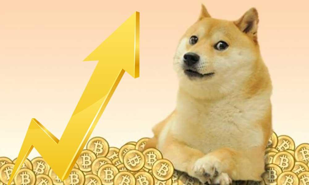 DOGE, dogecoin, kripto para, altkoin