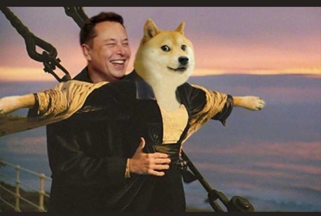 Elon Musk, Dogecoin, Bitcoin, Kripto, Kriptopara