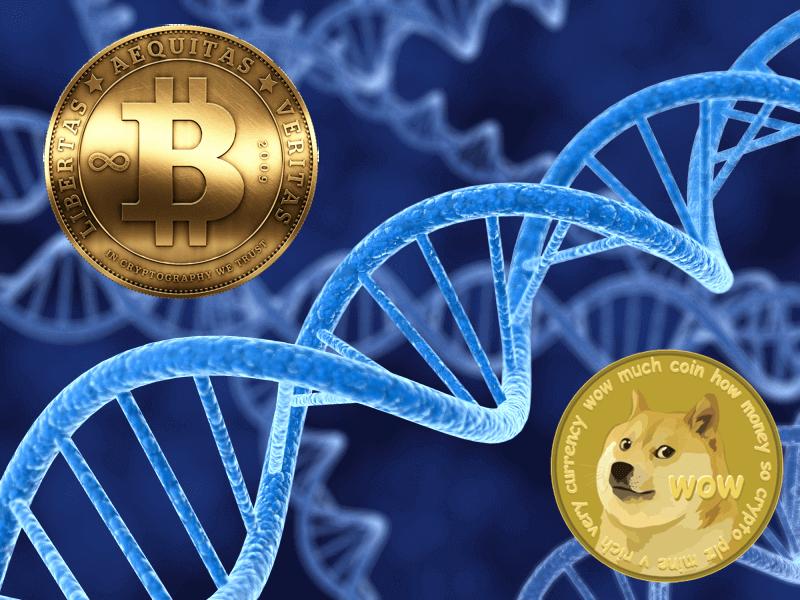 dogecoin ve bitcoin, DOGE ve BTC