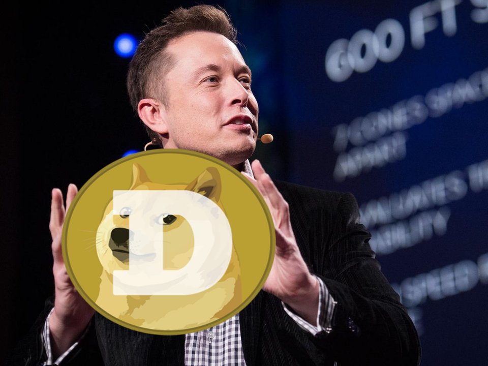 dogecoin, Elon Musk, doge, kriptopara