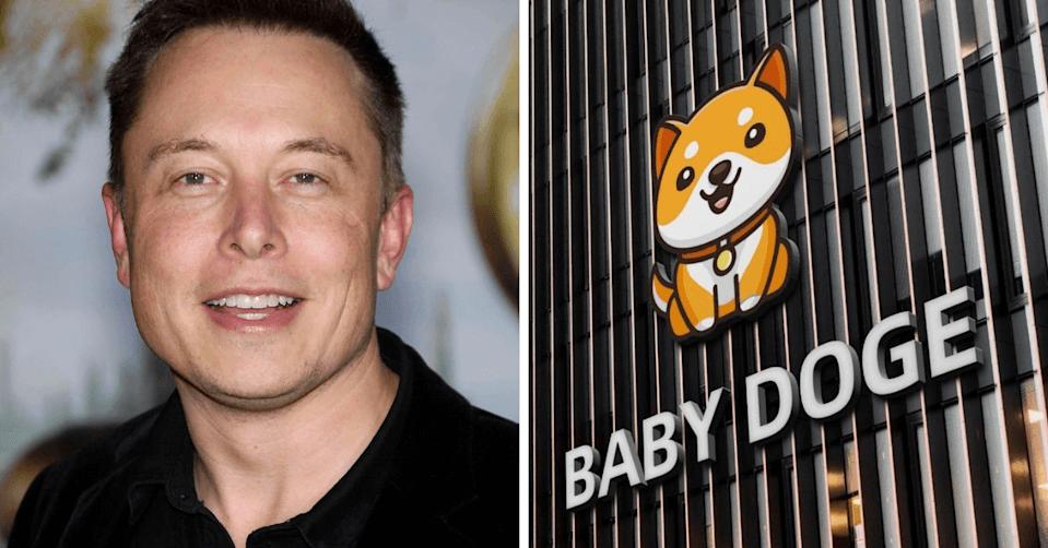 Doge, Bebek Doge, Elon Musk, Dogecoin