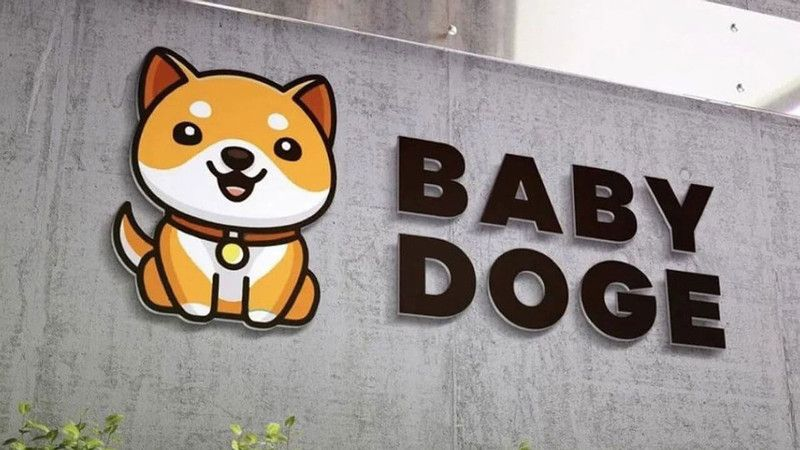Elon Musk, Baby Doge, Doge, DOGE
