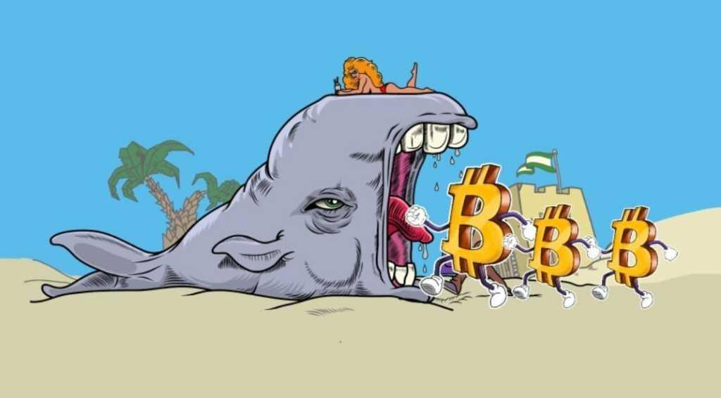 BTC balinaları, kripto para borsaları