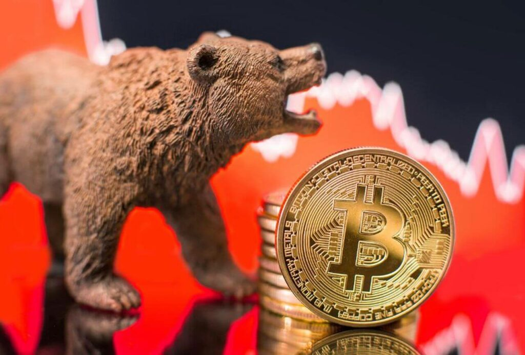 ayı sezonu, bitcoin