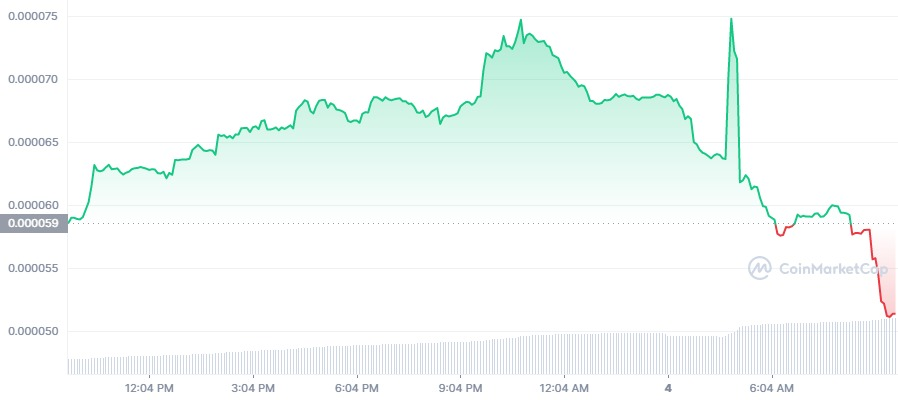FLOKI 1D graph coinmarketcap