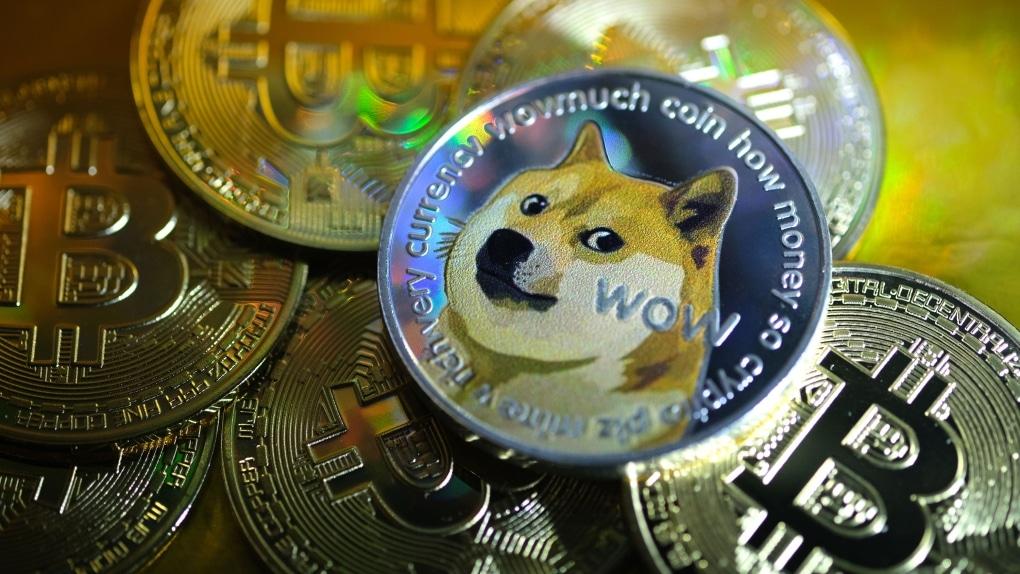 shiba fiyatı, shib, shib coin